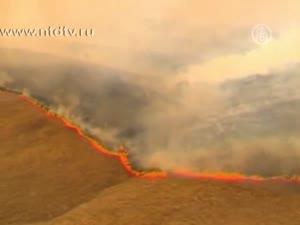 В Австралии и Новой Зеландии начались пожары