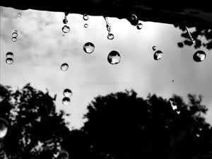 გიორგი ტიგინაშვილი - წვიმა