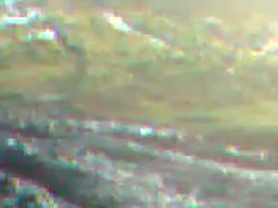 ოფროუდი