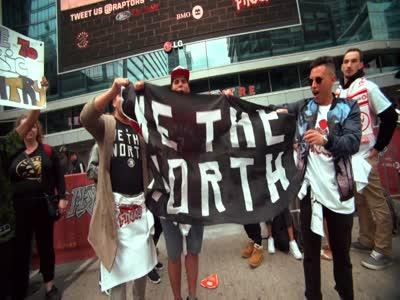 Toronto Raptors Reflect