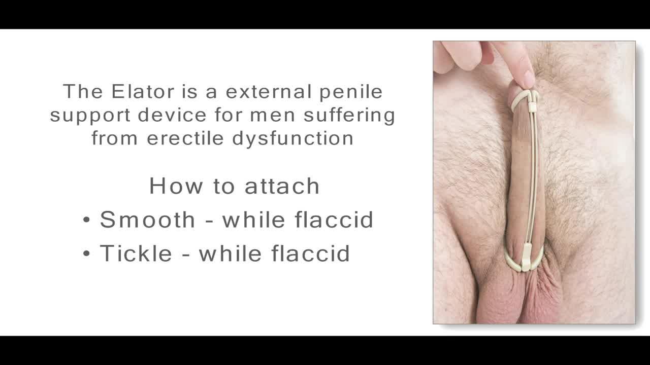 rogor gavididot penisi